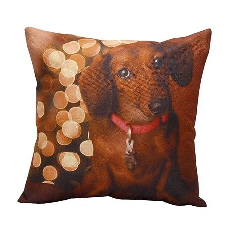 MAJGLGE - Funda de cojín para sofá y Silla, diseño de Perro ...