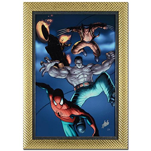 STAN LEE Signed Original Marvel Artwork Comics Spider-Man canvas framed Hulk