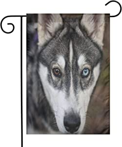 Augenstern Garden Flag Husky Dog Canine Lover 12 X 18 Inch Winter Yard Flag Double Sided Yard Decorations Holiday Outdoor Flag