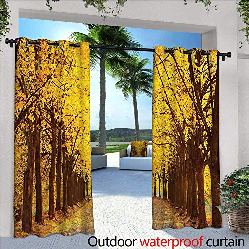 - Landscape Outdoor- Free Standing Outdoor Privacy Curtain Botanical Garden Autumn Leaves in the Fall Linden Alley in Kiev Ukraine Image for Front Porch Covered Patio Gazebo Dock Beach Home W72