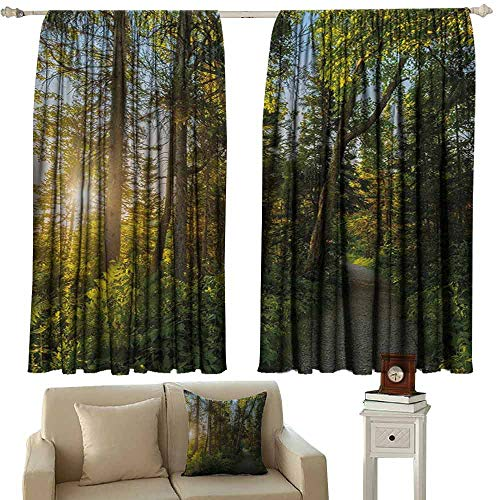 DuckBaby Customized Curtains Landscape National Park in Cape Breton Highlands Canada Forest Path Trees Tranquility Photo Blackout Draperies for Bedroom Window W63 xL63 Blue Green