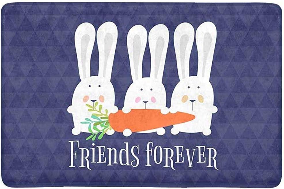 Soefipok Tapis de Porte dentr/ée dentr/ée pour Tapis de Lapins Happy Easter Bunny Lapins Ext/érieur//Int/érieur//Salle de Bains//Cuisine//Chambre /à Coucher//Tapis de Plancher dentr/ée , Caoutchouc antid/érap