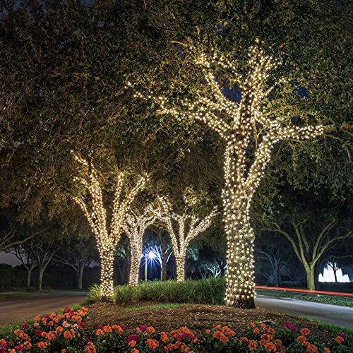 Ora LED Solar Powered Waterproof String Lights, 100 LED's 55 feet (Lights Christmas Outdoor)