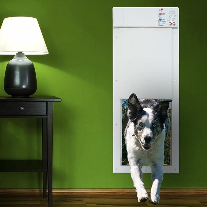 Amazon Power Pet Large Electronic Pet Door Px 2 Pet Supplies
