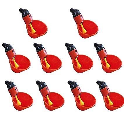 Amazon.com: Maikouhai Feed - Vasos de agua para aves de ...
