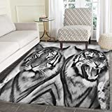 Safari Rug Kid Carpet Cat Expression Opposite Images Fearsome Teeth Mirror Angry Intense Wildlife Home Decor Foor Carpe 4'x6' Pale Grey Black