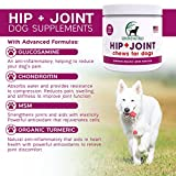 Glucosamine-Chondroitin-MSM-Organic-Turmeric-Soft-Chews-by-Genuine-Naturals-Hip-and-Joint-Supplement-for-Dogs-Supports-Healthy-Joint-Function-and-Helps-With-Pain-Relief-120-Count