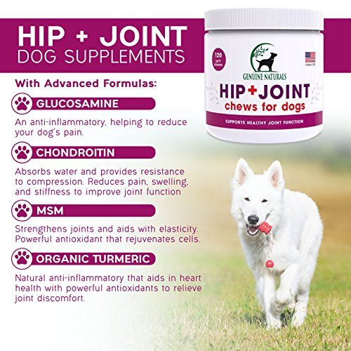 Genuine Naturals™ Glucosamine Chondroitin, MSM, Organic Turmeric Soft Chews by, Hip and Joint Supplement for Dogs, Supports Healthy Joint Function and Helps With Pain Relief, 120-Count by Genuine NaturalsTM (Image #6)
