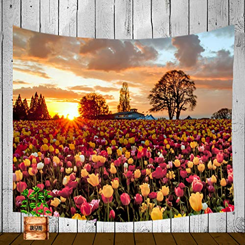 XMNTG Tapestry Dusk Sunset Tulip Field Tree Pine Country House Rural Yellow Red Best Gift Wall Hanging Dorm Decor Curtain Living Room Bedroom Decor (60x40 inch) ()