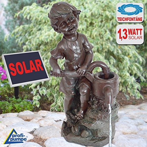 AMUR SOLAR FOUNTAIN POND PUMP The Rascal FOR A PROMISING DECORATION solar water feature outdoor water fountain SOLAR FEATURE FOR THE GARDEN ornamental fountain