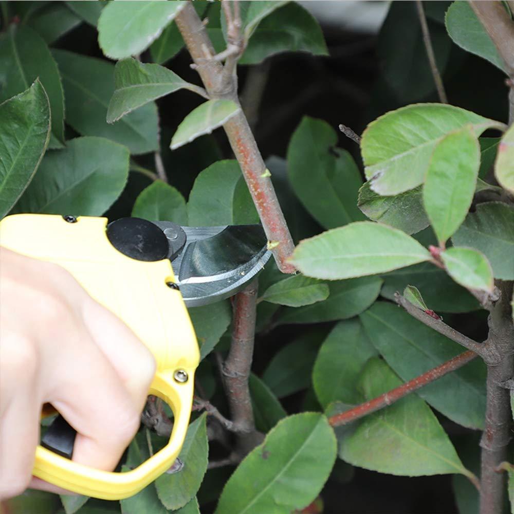 HWJF Professionelle elektrische elektrische elektrische Gartenschere, kabellose Baumschere für Gartenarbeit, elektrische Schere, Obstbaumhalterung (beide des größten Kalibers 30MM-25MM), 2Ah Lithium-Batterie B07PRBHX8V | Shopping Online  af37e5