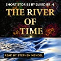 River of Time Audiobook by David Brin Narrated by Stephen Mendel
