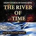 River of Time Hörbuch von David Brin Gesprochen von: Stephen Mendel
