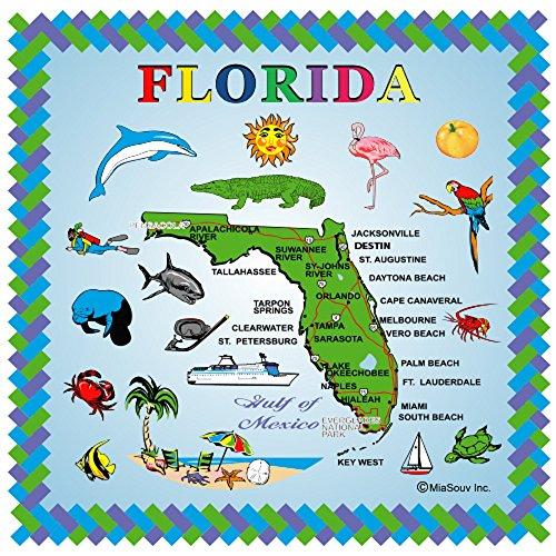 Souvenir Plate Wall (Tile Florida Souvenir 6