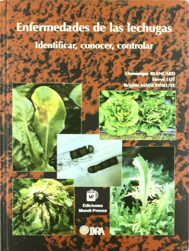 Descargar Libro Enfermedades De Las Lechugas. Identificar, Conocer Y Controlar De Institute National Institute National De Recherche Agronomique