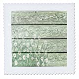 3dRose Spring Flowers - Image of Spring Daisies On Green Country Barn wood - 16x16 inch quilt square (qs_280003_6)