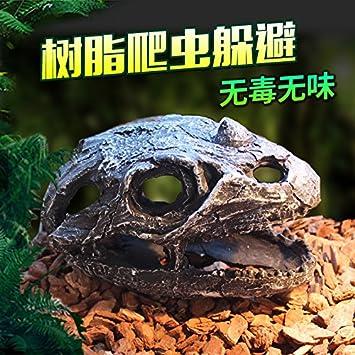 Die Reptilien Schildkröten Chassis Chassis Chassis Aquarien der ...