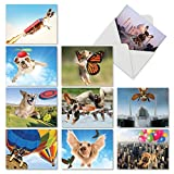 M6448TYG The Flying K9: 10 Assorted Thank You Note Cards Featuring a Variety of Dog Breeds Enjoying Flights of Fancy, w/White Envelopes.
