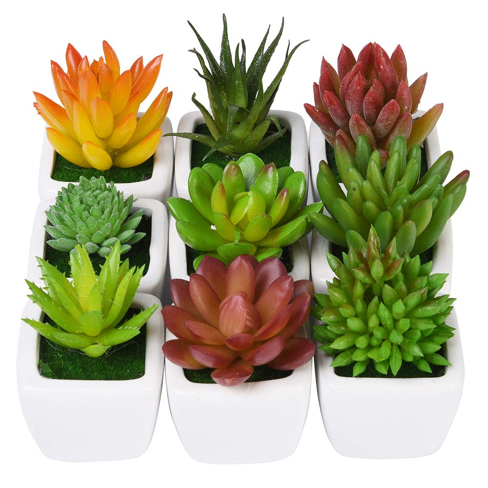 CHICHIC Set of 9 Mini Assorted Artificial Succulent Plants, Decorative Faux Succulents, Small Fake Plants for Decoration, Potted Fake Succulents with Ceramic Pots, Fake Aloe Cactus Cacti with Planters