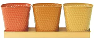 Robert Allen Selby Series Herb Garden Planter Pot Set, 4 Piece Set, 3 Pots and 1 Tray, Vivid Butterscotch Color