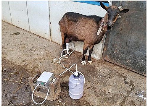 Facile da trasportare Lavoro allaperto 4-5 Ore bovini cammelli WAYMX Tiralatte Elettrico//a Doppia Testa Mungitrice//Adatto per Pecore