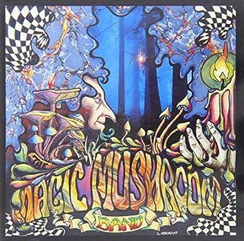 Re Hash By Magic Mushroom Band Amazon Com Music