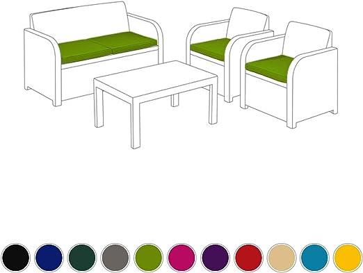 Verde lima cojines de repuesto 4 piezas para Keter Allibert Carolina Conjunto de patio para exterior: Amazon.es: Jardín
