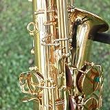 ammoon Saxophone Sax Eb Be Alto E Flat Brass Carved