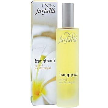 0998968e73a FARFALLA Frangipani Eau De Cologne - 50ml  Amazon.co.uk  Beauty