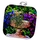3dRose Alexis Photography - Seasons Summer - Marble garden vase full of colorful plants and flowers - 8x8 Potholder (phl_276058_1)