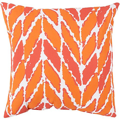 Surya RG174-1818 Indoor/Outdoor Pillow, 18-Inch by 18-Inch, Coral ()