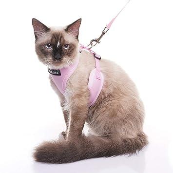 Amazon.com: Arnés para gatos a prueba de fugas con correa ...