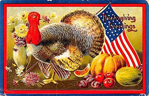 Thanksgiving Postcard Old Vintage Antique Post Card Patriotic