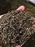 Organic Bio Herbs-Organic Dried Nettle Leaf/leaves (Urtica Dioica) 6 Oz.
