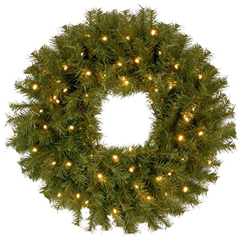 national tree 24 inch norwood fir wreath with 50 battery operated dual led lights battery - Battery Operated Christmas Wreaths