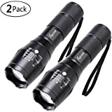 2 Pack One Mode Led Flashlights