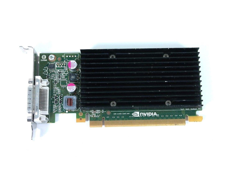 Amazon.com: Tarjeta gráfica NVIDIA NVS 300 Quadro PCIe 2.0 ...