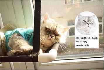 Hamaca para Gatos, Cama Colgante para Mascotas Perch Montado En La Ventana Sunny Seat Cómodo