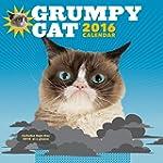 Grumpy Cat 2016 Wall Calendar