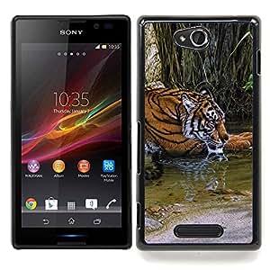 """Qstar Arte & diseño plástico duro Fundas Cover Cubre Hard Case Cover para Sony Xperia C (Río Tigre lindo Piel África Naturaleza Verde"""")"""