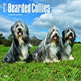 Bearded Collies Dog Wall Calendar 2018 {jg} Best Holiday Gift Ideas - Great for mom, dad, sister, brother, grandparents, , grandchildren, grandma, gay, lgbtq.