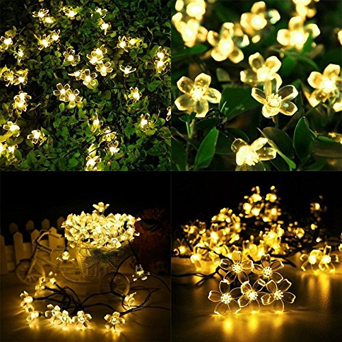 Ring Low Voltage Garden Lighting Kits - 9
