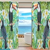 SEULIFE Window Sheer Curtain, Tropical Flower Toucan Bird Palm Leaves Voile Curtain Drapes for Door Kitchen Living Room Bedroom 55x84 inches 2 Panels