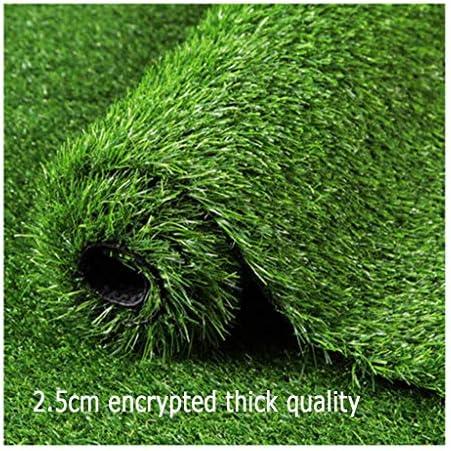 PING- 人工芝の芝生、 暗号化された厚い25mmスプリンググラス PE環境に優しい無害なグリーンカーペット 地中壁のシーンレイアウト用 3サイズ (Color : 2×2m)