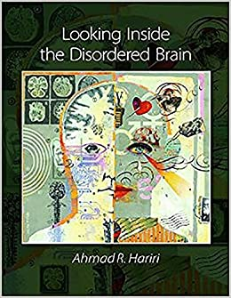 Book Looking Inside the Disordered Brain