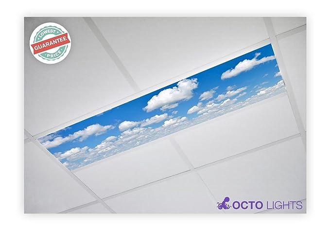 Awe Inspiring Cloud 011 1X4 Flexible Fluorescent Light Cover Amazon Com Download Free Architecture Designs Scobabritishbridgeorg