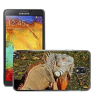 Cas Coq Case Cover // M00146784 Iguana Reptil Lagarto Dragón Animal // Samsung Galaxy Note 3 III N9000 N9002 N9005