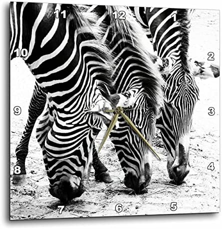 3dRose Three Zebras. Zebra Print. Popular Image. – Wall Clock, 13 by 13-Inch DPP_218444_2