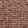 Koni Brick Old Chicago Rosse 10.76 sq. ft. Flats 0.65 in. x 8.20 in. x 2.50 in. Thin Brick