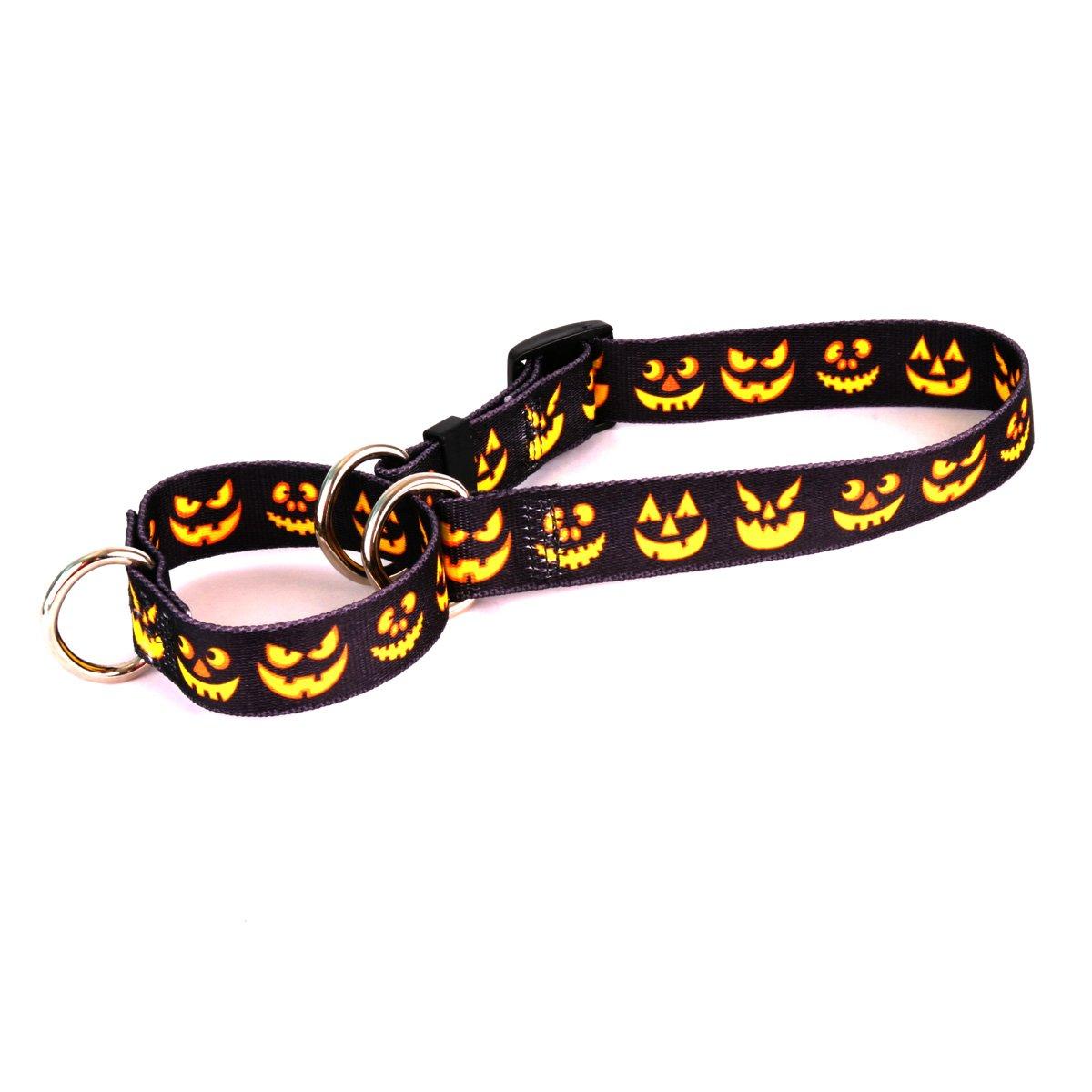 Jack O'Lantern Large 27\ Jack O'Lantern Large 27\ Yellow Dog Design Martingale Slip Collar, Jack O'Lantern, Large 27